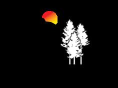 Dbs_logo_cmyk
